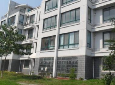 丽水湾(三成路455弄) 3室2厅1卫