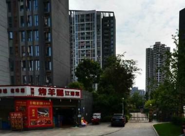 仁安龙城国际A区(仁安龙城国际一期)