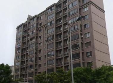 张江汤臣豪园四期 2室2厅1卫
