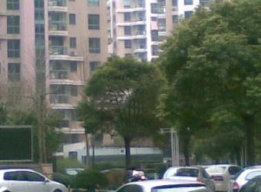 宋家滩小区(大渡河路95弄) 1室1厅1卫