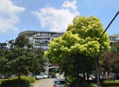 新江浦公寓 1室0厅1卫