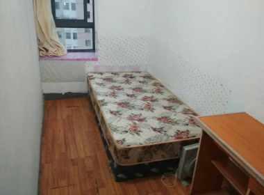 华泾绿苑 1室0厅0卫
