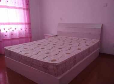 蔷薇苑 1室1厅1卫
