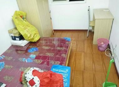 三林新村C 1室1厅1卫