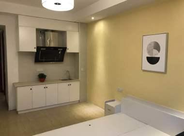 麦田公寓(滨文店) 1室1厅1卫