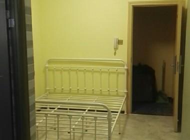 蜂巢公寓(新洲) 1室0厅1卫