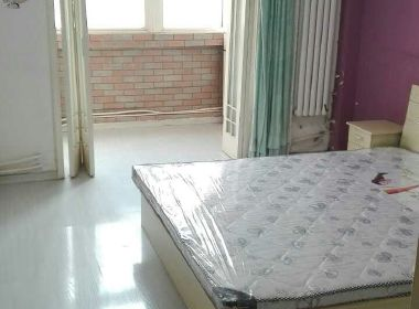 龙海公寓 1室0厅1卫