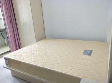 巴登公寓 1室0厅1卫