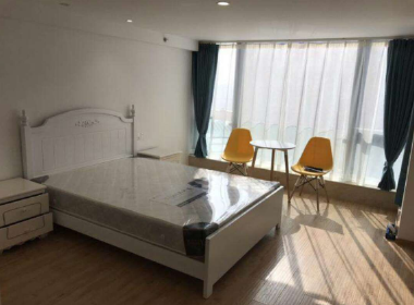 天纵公寓 1室0厅1卫