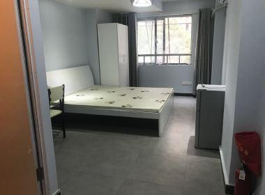 星文公寓 1室1厅1卫
