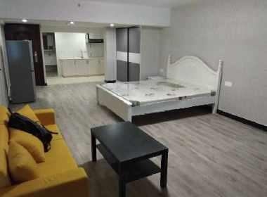 丽晶国际 1室1厅1卫