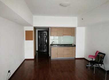 江桥万达城市公寓 1室1厅1卫