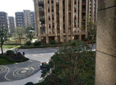 上实海上海1期(白洋港城)