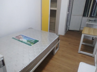 海豚公寓A栋 1室0厅1卫