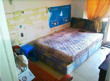 碧林湾 1室0厅0卫